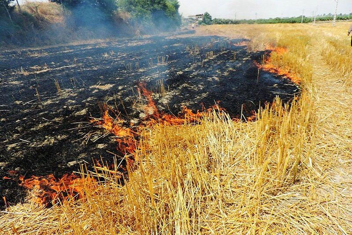جنگلهای ارسباران همچنان درگیر آتشهای پراکندهاند