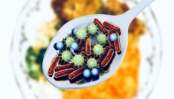 8توصیه برای پرهیز از مسمومیت غذایی در تابستان