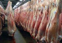 روزانه 120تن گوشت قرمز وارداتی در بازار توزیع میشود
