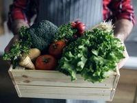 فرمول مبتنی بر سبزی برای دیابت نوع 2