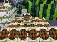 تولید غذای ارگانیک در کشور غیرممکن است