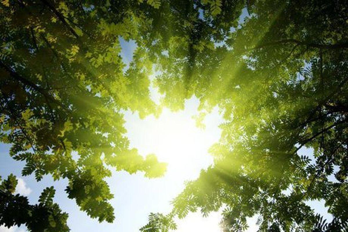 افزایش گرما در کشور و هشدار رشد مصرف برق