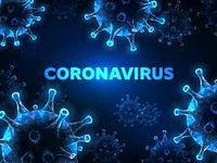 ۱۴۶هزار و ۸۴۱نفر در جهان قربانی کروناویروس