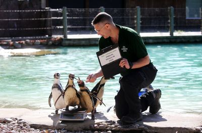 باغ وحش London Zoo