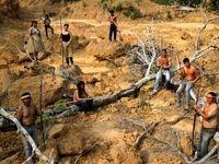 آمریکا برای مهار آتش سوزی در جنگلهای آمازون کمک خاصی نمیکند