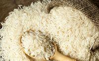 بدعهدى دولت در تخصیص ارز براى واردات برنج/ معطلى ٢٥٠هزار تن برنج در گمرکات کشور