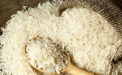 دنبال مشتری برای صادرات برنج اروگوئهای هستیم