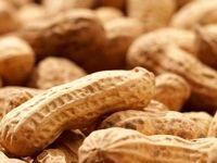 درمان آلرژی به بادام زمینی با پروتئین بادام زمینی