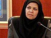 سهم اقتصاد سبز ایران زیر نیم درصد است