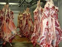 جزییات عرضه گوشت تنظیم بازاری اعلام شد