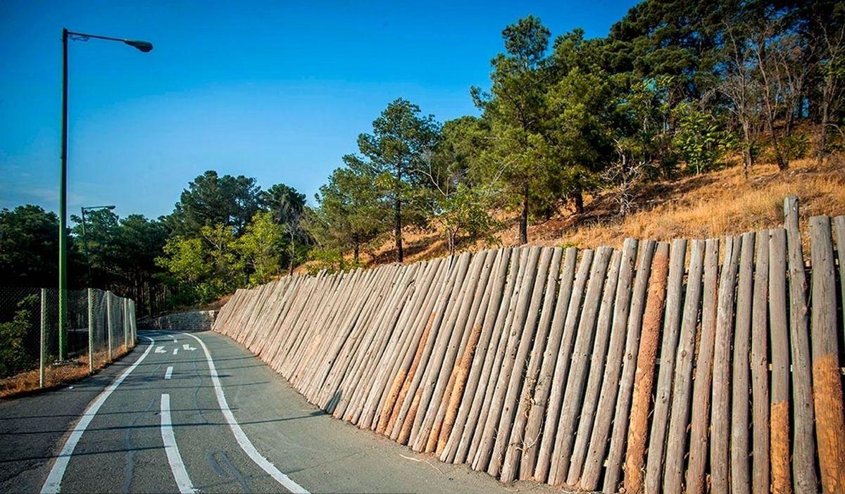 توقف خودروها مقابل بوستانهای پایتخت در روز طبیعت ممنوع است