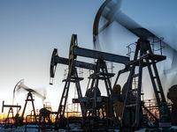 هند برای واردات نفت براساس منافع خود عمل میکند