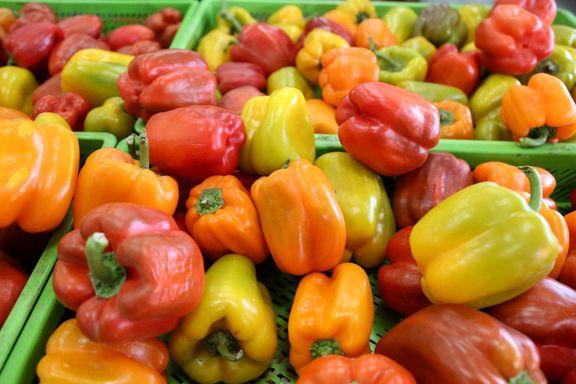 تغییرات قیمت اقلام خوراکی در مرداد۹۷/ نرخ خوراکیها از منفی ۴۷.۵درصد تا ۸۵.۸درصد نسبت به سال گذشته رشد داشت