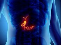 شایع ترین بیماری های کیسه صفرا چیست؟