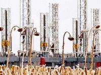 آمریکا در سال۲۰۱۹ بزرگترین تولیدکننده نفت میشود