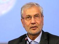 ربیعی: وزیر بیکارانم/ کیک اقتصادی کشور کوچک شده است