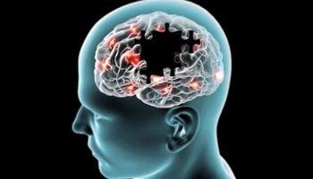 عواملی که باعث جلوگیری از «آلزایمر» می شوند، کدامند؟