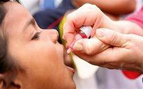 واکسن فلج اطفال تقلبی در بازار وجود ندارد