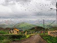 تاثیر پارازیت بر بارندگی