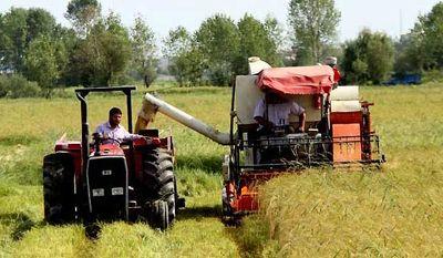طرح ارتقا سلامت محصولات کشاورزی در دستور کار