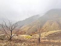 روستاگردی در تهران با چه مانعی روبهرو است؟