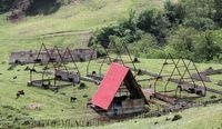 پشتصحنه خانههای خالی در دو استان شمالی