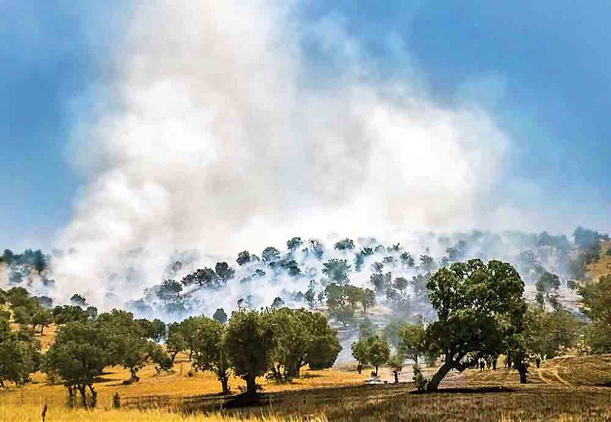 نابودی ۲۵میلیون مترمکعب آب زیرزمینی در آتش زاگرس