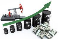 بهای نفت همچنان روند صعودی طی می کند