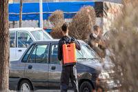 ضدعفونی خودروهای عبوری از زنجان +عکس