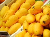 فواید میوههای هستهدار