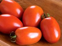 دلیل گرانی سیب زمینی و گوجه فرنگی