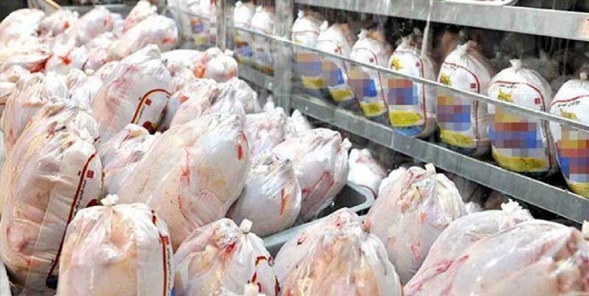 قیمت مرغ در بازار نزولی شد