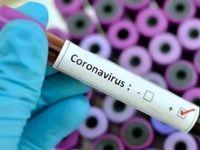 تشخیص خطر مرگ بیماران کرونایی با آزمایش خون