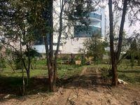 عزم طرح تفصیلی برای نابودی باغهای تهران