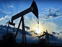تولید نفت آمریکا افزایش یافت