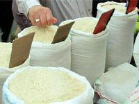 افزایش قیمتی در برنج ایرانی و وارداتی نداشتیم