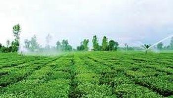 آبیارینوین در بیش از یک میلیون هکتار از اراضی کشاورزی اجرا شد