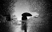 منتظر بارش
