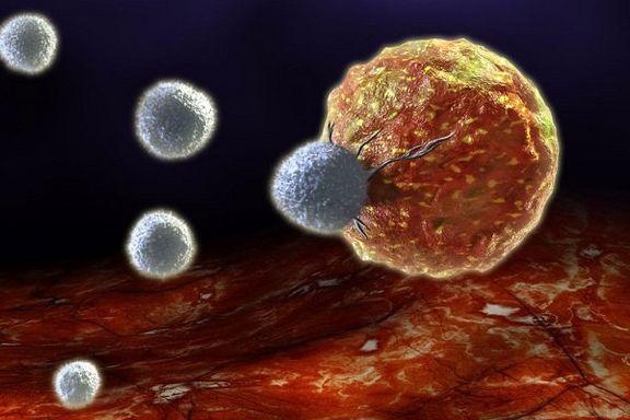 ۲۷۰نوع سرطان در جهان وجود دارد