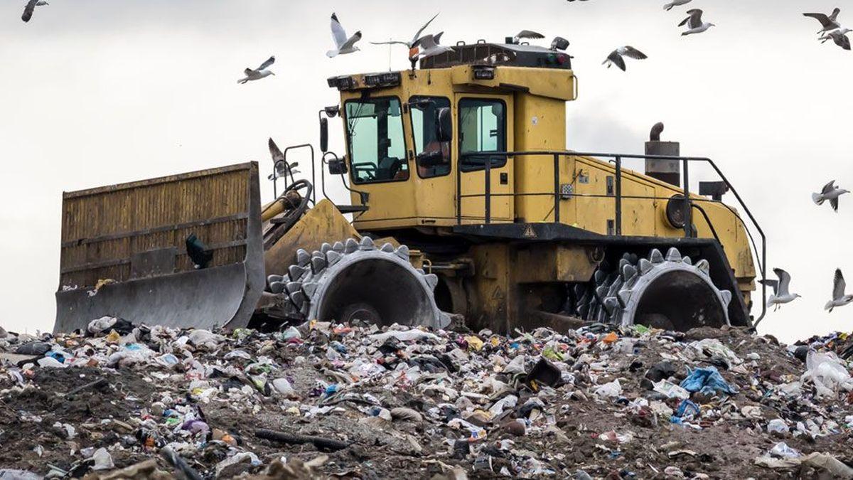 ۱۷درصد مواد غذایی، مستقیم به سطل آشغال میرود