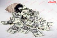 دلار درجا زد