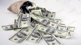 چرا اطلاعات درآمدی ارزی محرمانه است؟