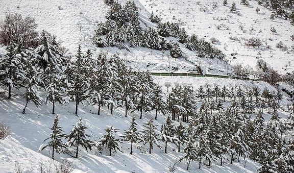 ادامه برف و باران در کشور تا دو روز آینده