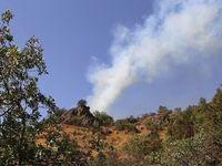 ارسباران همچنان در آتش میسوزد +عکس