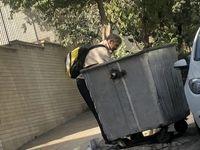 افزایش زبالهگردی؛ نباید شرم کنیم؟