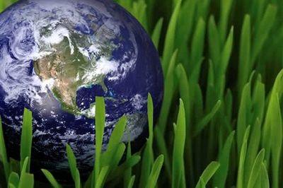 راهحلهای ساده برای نجات زمین
