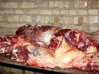علاج قیمت گوشت در واردات نیست