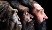 رونمایی از قدیمیترین دندان انسان +عکس