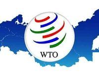 چراغ سبز به عضویت ایران در WTO