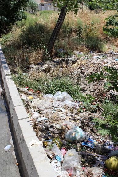 فاجعه سبزیهای آلوده در تهران +تصاویر